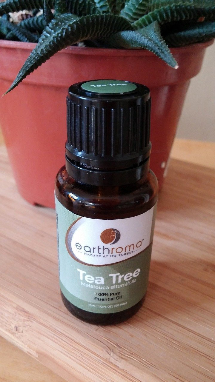 Skab balance med Tea Tree Oil